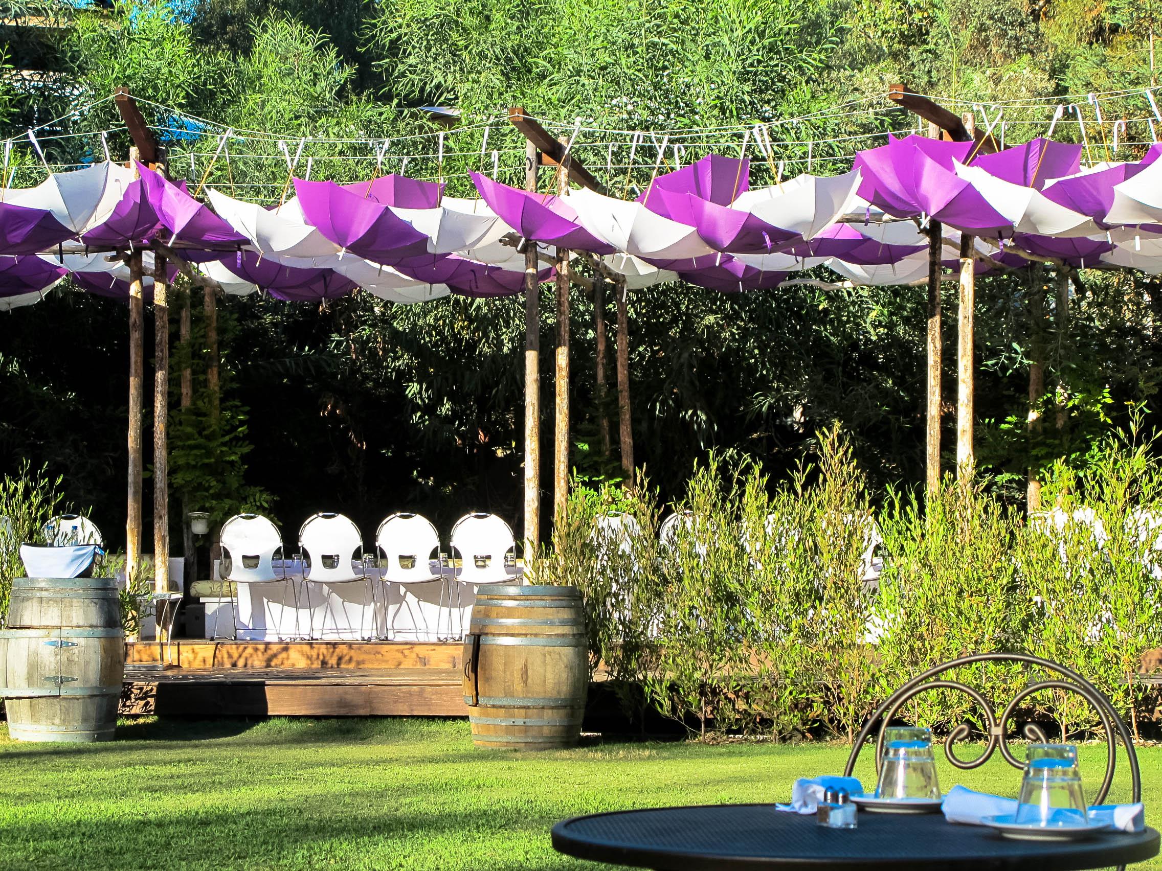 Malibu Cafe Winery Explorers